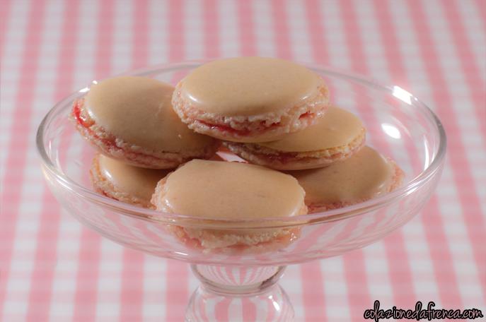 macarons fragola